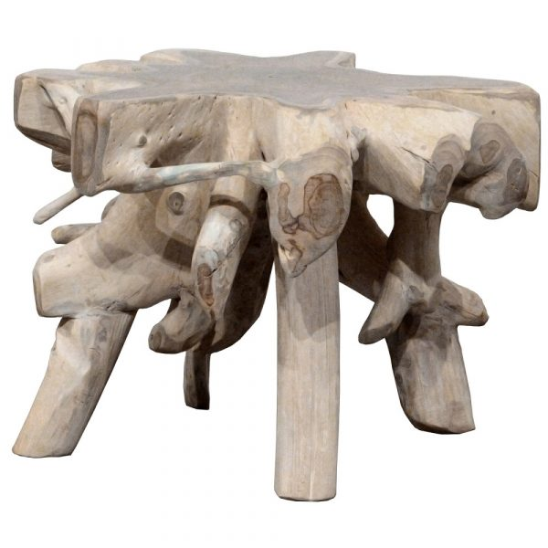 Root Wood Accent Table in Light